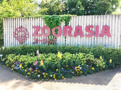 よこはま動物園ズーラシアの注目動物や園内マップまとめ【決定版】