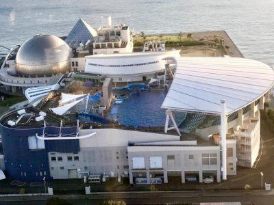 名古屋港水族館の海の生き物や館内マップ・見どころまとめ