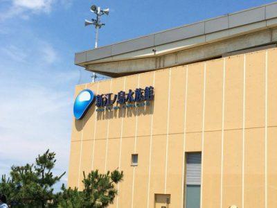新江ノ島水族館の海の生き物や館内マップ・見どころまとめ